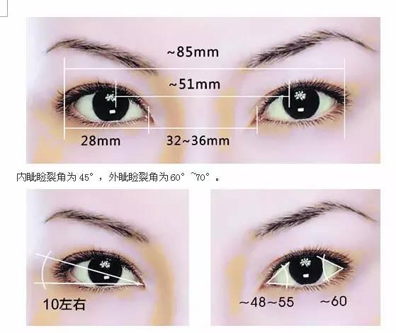 上海美莱双眼皮标准比例图
